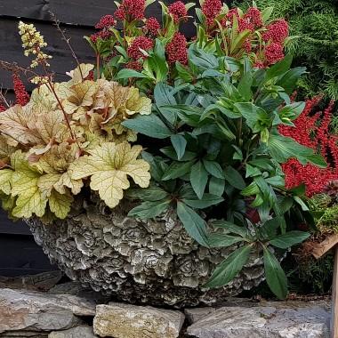 Jesień w ogrodzie i na tarasie