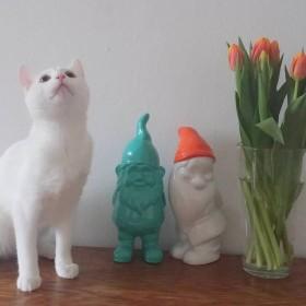 wiosennie przed Wielkanocą w Bremen