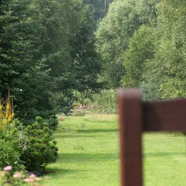 widok na dalszy ogród