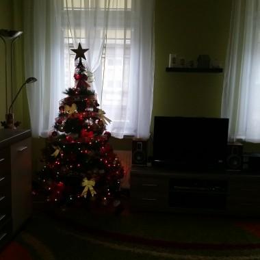 Salon -już prawie świątecznie