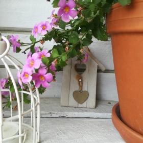 .. balkoning :-)..