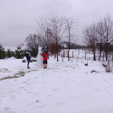 Jak wróciłam z Sylwestra Las przywitał nas śniegiem. Maria St. zapytała, czy to mój ogród na zdjęciu. To pytanie natchnęło mnie żeby pokazać zimowo letnią galerię. Dziękuję Mario za natchnienie.Młodzież zabrała się za lepienie bałwana. Ulepili w końcu Boga Odyna. Zięć jest zakochany w Wikingach
