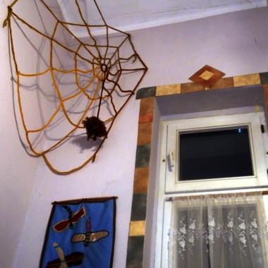 ten niewinny pająk to symbol bogatego domu