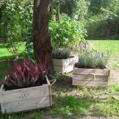 mój mały azyl - ogród
