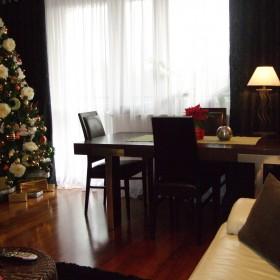salon w świątecznej odsłonie :)