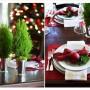 Pozostałe, Na świątecznym stole - Czerwień z zielenią –tradycjne zestawienie. Małe choinki  postawione na stole w metalowych doniczkach zastąpią tradycyjny wystrój kwiatowy.