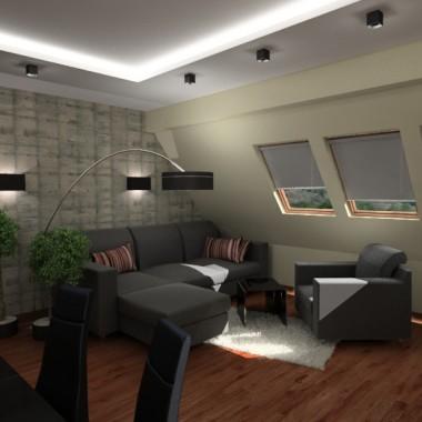 Salon - aneks kuchenny - korytarz