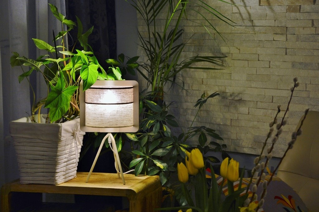 Pozostałe, nowa lampka,  ..... krokusy, bazie, motylki i pczółki :) ......