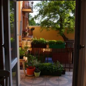 Balkon kuchenny