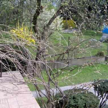 Zapraszam do ogrodu...