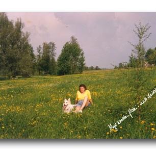 Tak wyglądało moje pole w 1996 roku. Na pierwszym planie małe drzewko modrzewia.