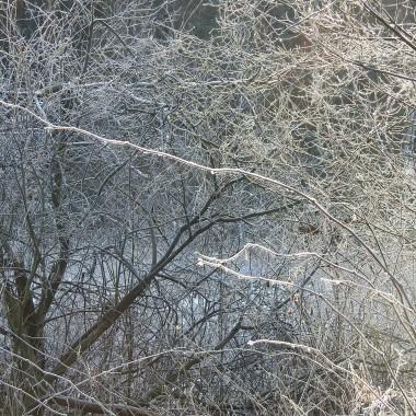 Mam nadzieję,że to ostatnie foty z zimowego lasu.Lodowym pocałunkiem żegna się z nami zima .Pakuje swoje walizki i wyjeżdża do Mroźnej Krainy ..Zima jest piękna ale na fotografiach ...Chciałabym już uwolnić się od czapek i szalików...marzenie:)Czuję,że mam zapotrzebowanie na kolor,kwiaty,słońce i bezchmurne niebo...