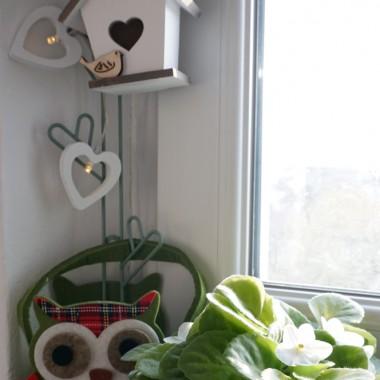 Mam nieduże okno i wąski parapet, ale przecież nie może stać bez dekoracji!