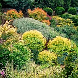 ogród na mazurach