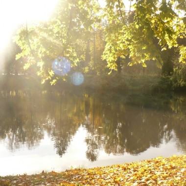 .................i jesień nad stawem ciągle piękna :) Pozdrawiam Was bardzo serdecznie i udanego weekendu życzę :)