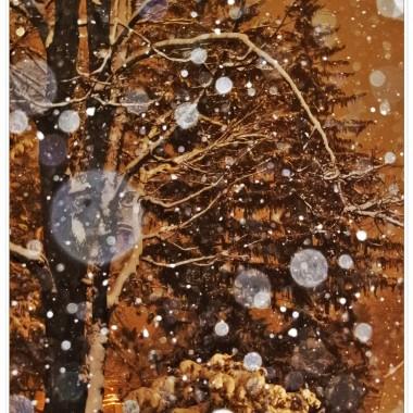 Wczoraj   posypało na biało. Śnieżny puch zakrył wszystkie brudy,szarości.Myślami jestem w Polsce gdzie zimy  zawsze są piękne. Do świąt zostało niewiele czasu,co widać w galeriach moich koleżanek.Królują fotki z pierniczkami ,choinkami,ozdóbkami. Oglądam  te wszystkie zdjęcia  z wielką przyjemnościa. U mnie jeszcze cisza,tylko świerk, ozdobiony świecidełkam stoi dumnie przed domem. Rośnie wysoko,wysoko, tak że nie ma mowy ,aby umieścić bombki na nawyższych gałązkach Świąteczne porządki zaczne robić może w poniedziałek. Piernik na bazie z kefirem, ,który zawsze się udaje, zrobię dopiero przed Wigilią. Pozostałe słodkości zamawiam w polskim sklepie. W tym roku spodziewam się więcej gości. Będą życzenia,kolędy i wspomnienia o tych,których już nie ma na kolacji wigilijnej. Ale to dopiero za naście dni. Dziś wklejam fotografie z zimowymi widokami  ,które mam za oknem.Miłej atmosfery przy  pracach przedświątecznych i..nie dajmy się zwariować