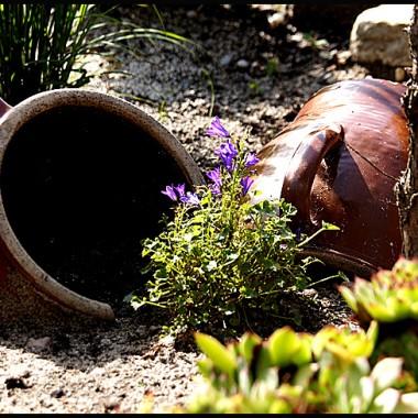 Nawet po sezonie warto wyczarować niesamowity klimat w ogrodzie ...... i tchnąc w dawne przedmioty nowe życie :)