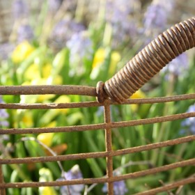 zapach wiosny.......