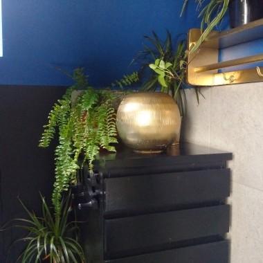 W łazience przy wannie paproc w najbliższym czasie więcej roślin.