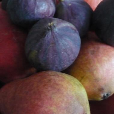..............i owoce................