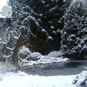 Z tęsknoty za zimą....