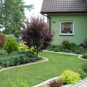 Mój ogród w czerwcu:)
