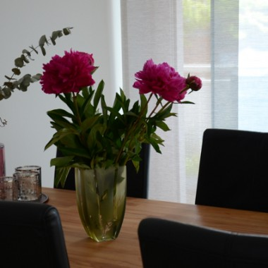 Peonie ... Jedne z moich ulubionych kwiatów