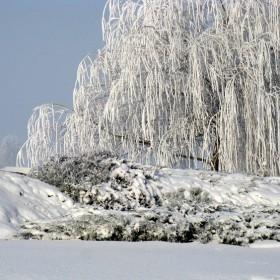 Moja zima na mojej wsi.