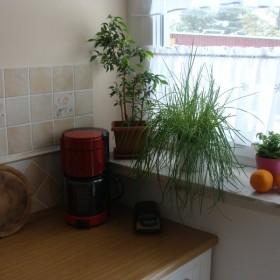 kuchnia nabiera własciwych kolorów:)