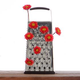 Kwiaty w mieszkaniu