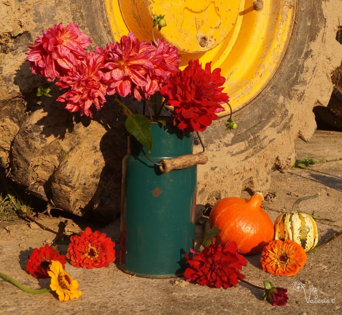 Kwiaty i traktor