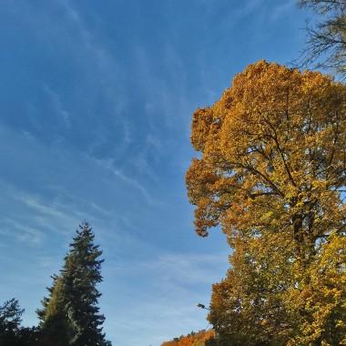 ...................i błękitne niebo...............