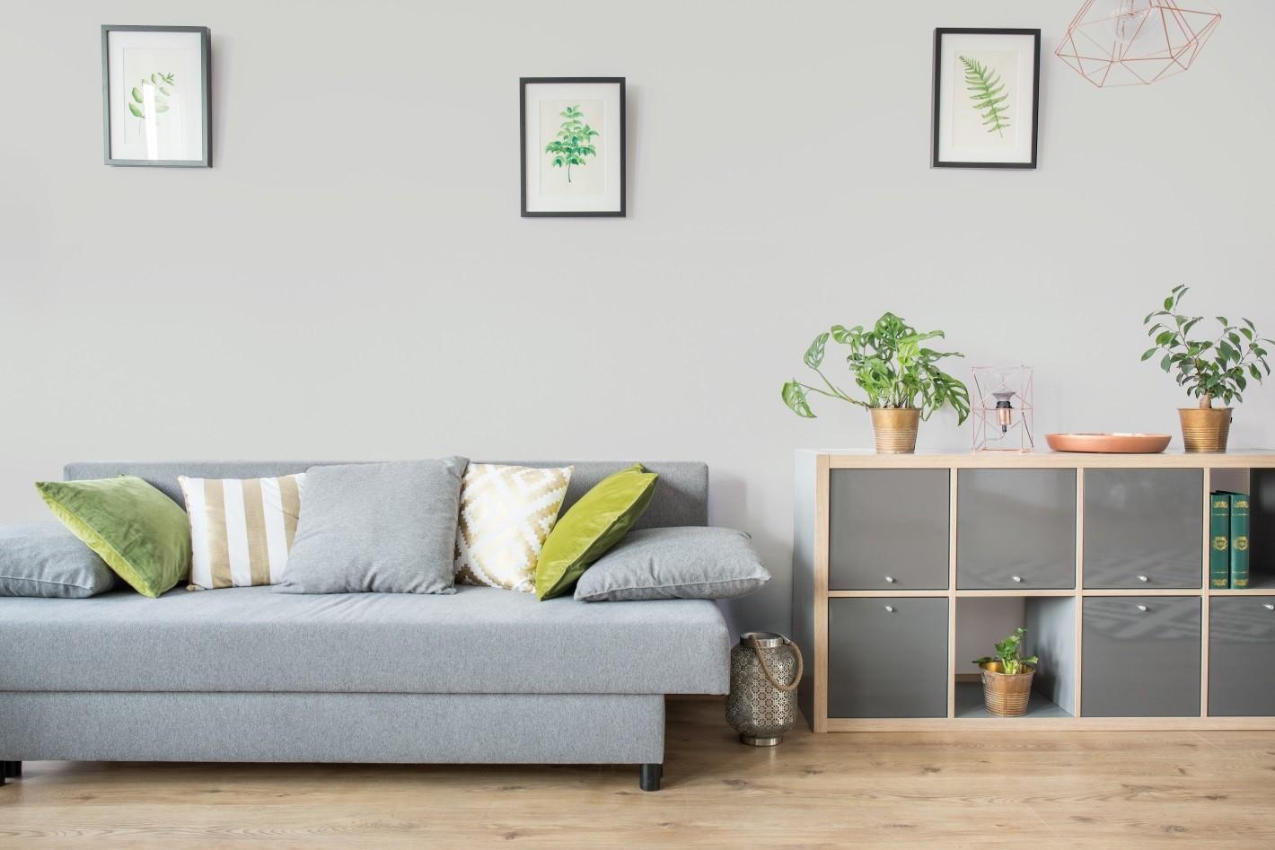 Salon z sofą.
