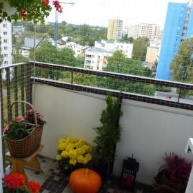 jesienńw moim mieszkaniu
