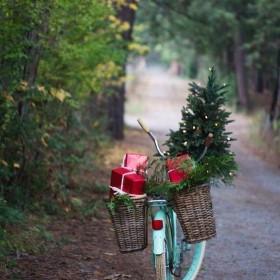 Swieta Bozego Narodzenia maja w sobie cos z bajki...