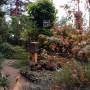 Ogród, Nieśmiała jeszcze jesień - widok z okna