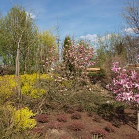 Goczałkowickie ogrody
