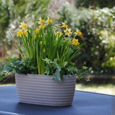 Pięknego weekendu dziewczyny :) ma być ciepły i słoneczny ,więc ja na bank oblecę ogrodniak i będę zapełniała donice :)