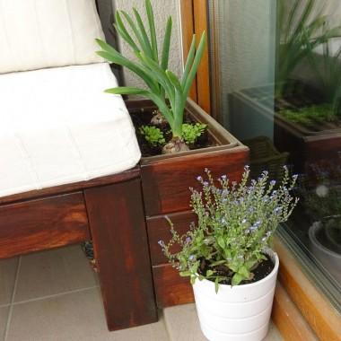 Do ławki z prawej strony przylega drewnianą doniczka, stanowiąca całość z ławka. Jestem bardzo zadowolona z tego efektu.