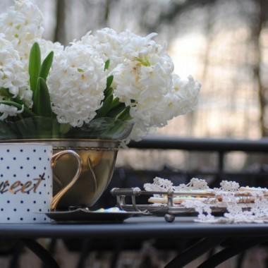 Dzień dobry wiosno !!!