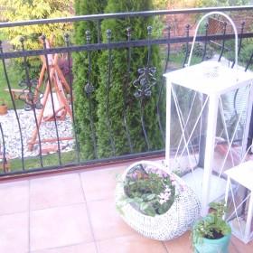 Dom i rośliny