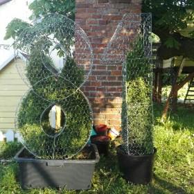 Topiary -  Stelaż własnej roboty