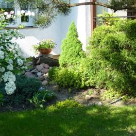mój ogródeczek