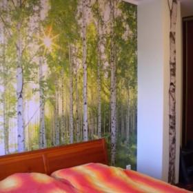 Sypialnia z brzozowym lasem w tle