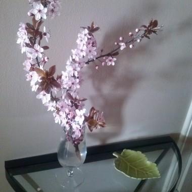 Witam!!!Wczoraj zawitała do mnie wiosna w postaci cudownej pary królików,pięknych pachnących bratków,zielonej misy i moździerza, oraz zielonego bluszcza w uroczej osłonce...Postanowiłam więc pochwalić się prezentami...&#x3B;)