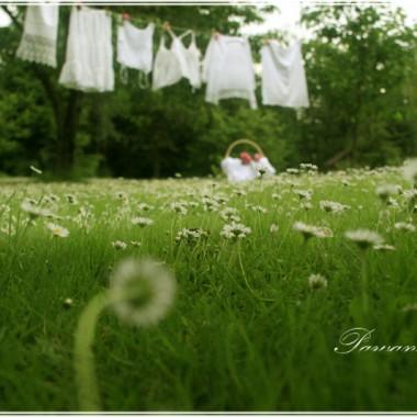 Wiosenne wspomnienie kwitnących peoni. Ogród zmienia się  kazdego dnia. Jedne kwiaty przekwitają, na ich miejsce pojawiają się inne, równie piękne. Jednak piwonie zawsze mnie urzekają. Kocham je jak róże, a może i bardziej...