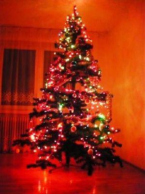 Dekoracje, Świąteczna choinka - Kolorowa