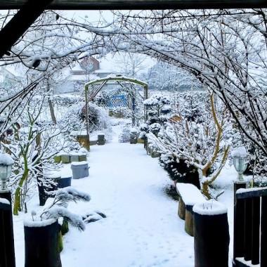"""Zima w ogrodzie """"Wyjątkowego domu"""""""