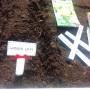 Ogród, Wiosenne grządki z nadstawki paletowej