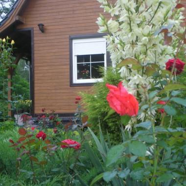 Mój domek i ogród:)Domek jest drewniany oczywiście:)